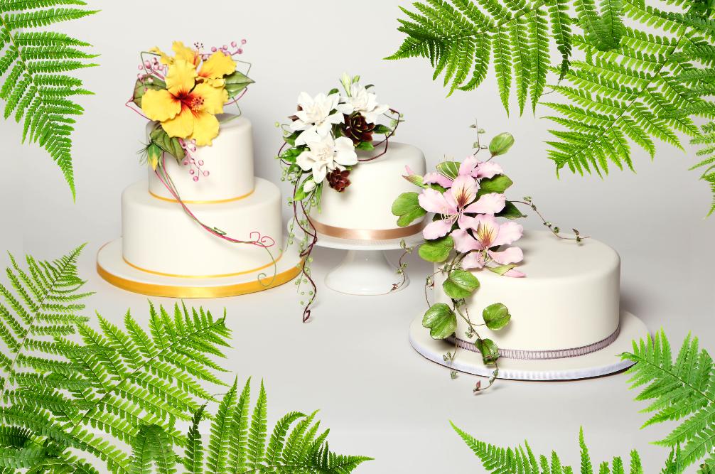 Alan Dun Cake Icons Cake Masters Magazine