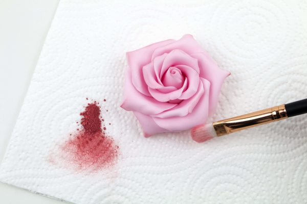 Shading With Pink Petal Dust