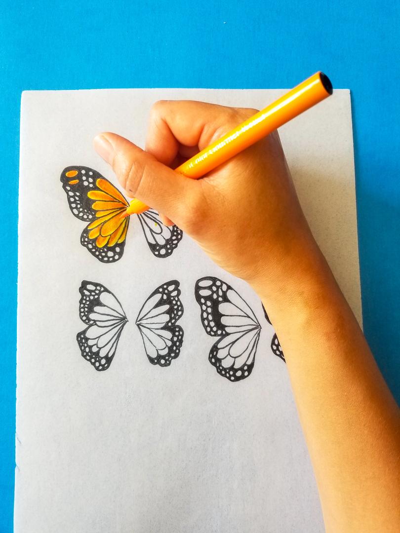 Design parchment butterflies